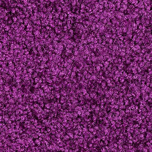 Sauberlaufmatten PT-max uni violett